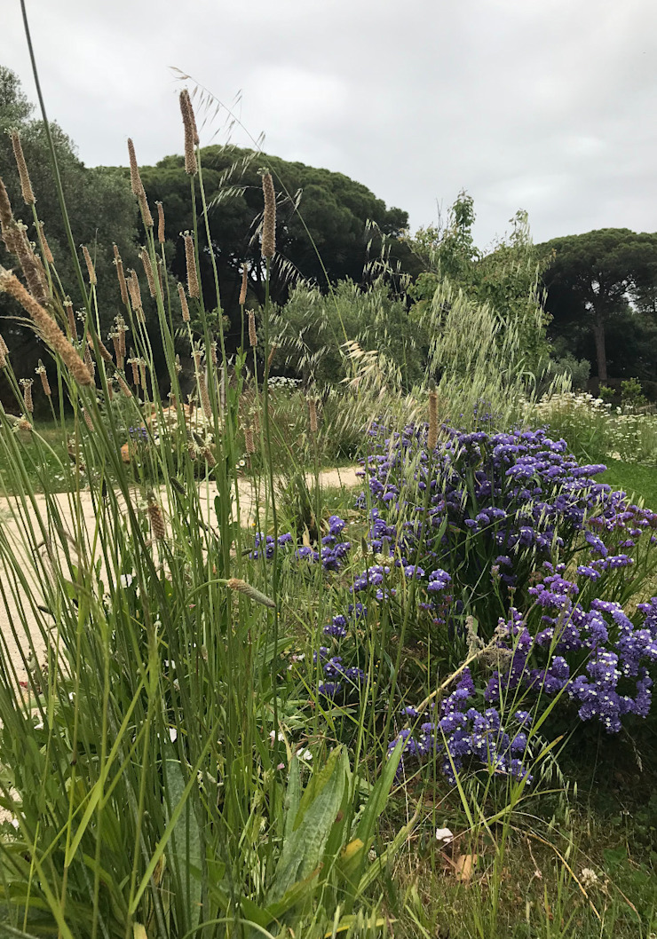Caminhos Jardins rústicos por Maria Mayer | Interior & Landscape Design Rústico