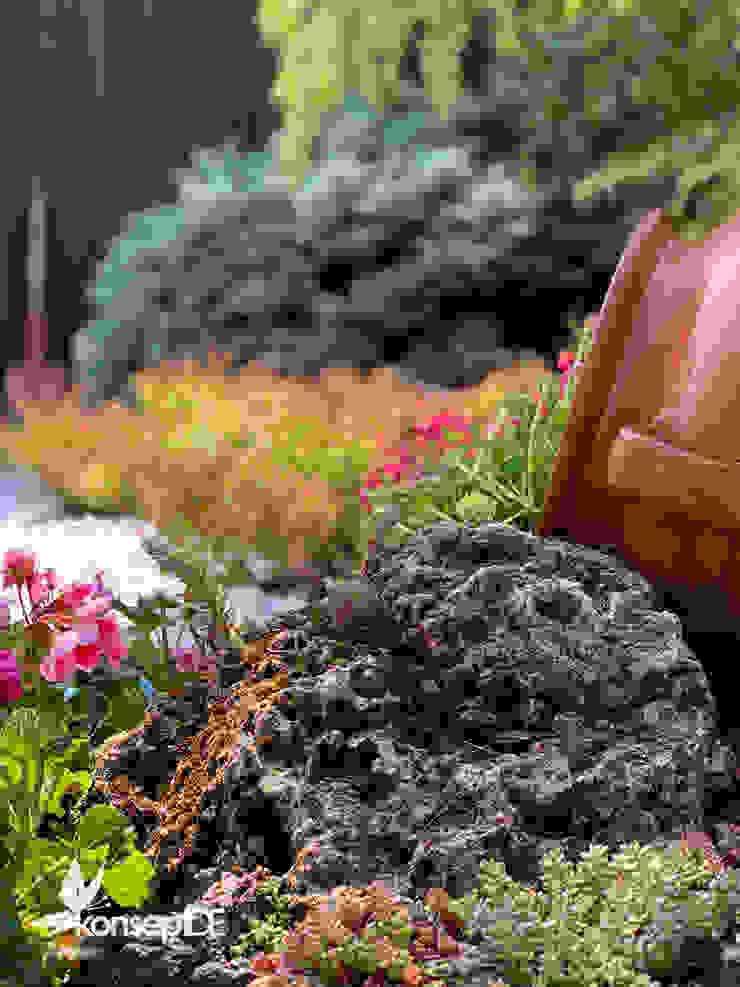 ÖZEL KONUT Peyzaj Bakım & Uygulama Klasik Bahçe konseptDE Peyzaj Fidancılık Tic. Ltd. Şti. Klasik