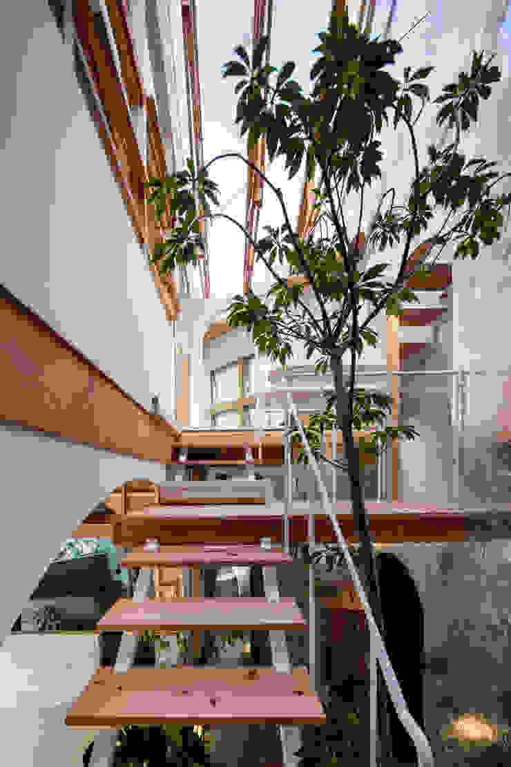 by FUMIASO ARCHITECT & ASSOCIATES/ 阿曽芙実建築設計事務所 Rustic Wood Wood effect