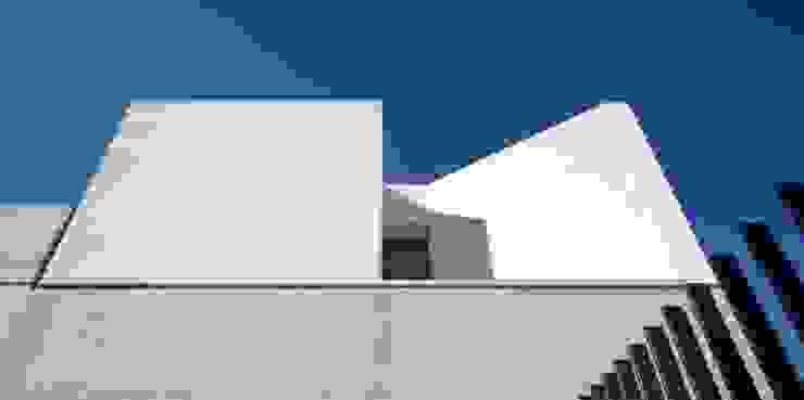 TEÓFILO. Carpintería de Aluminio Modern commercial spaces