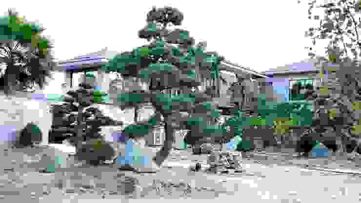 TRỒNG CÂY THÔNG ĐEN bởi SGL LANDSCAPE ARCHITECTURE CO.,LTD Châu Á