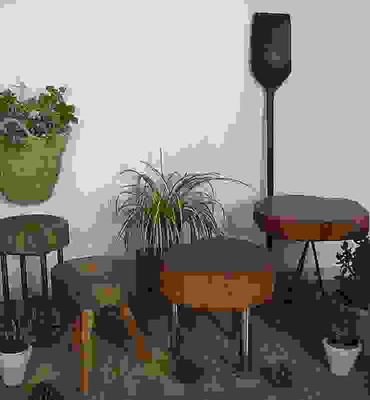 Naturalis Muebles Ecológicos Interior landscaping Solid Wood