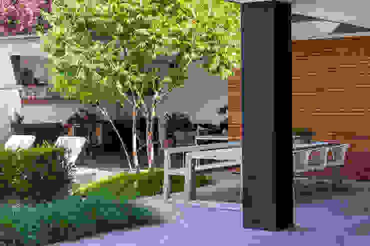 Meerstammige heester in border bij terras Moderne balkons, veranda's en terrassen van Buro Buitenom exterieurontwerpers Modern