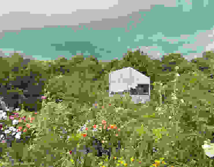 หลังคาในสวน โดย AMUNT Architekten in Stuttgart und Aachen, ผสมผสาน