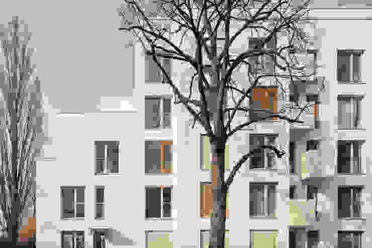 โดย SEHW Architektur GmbH มินิมัล