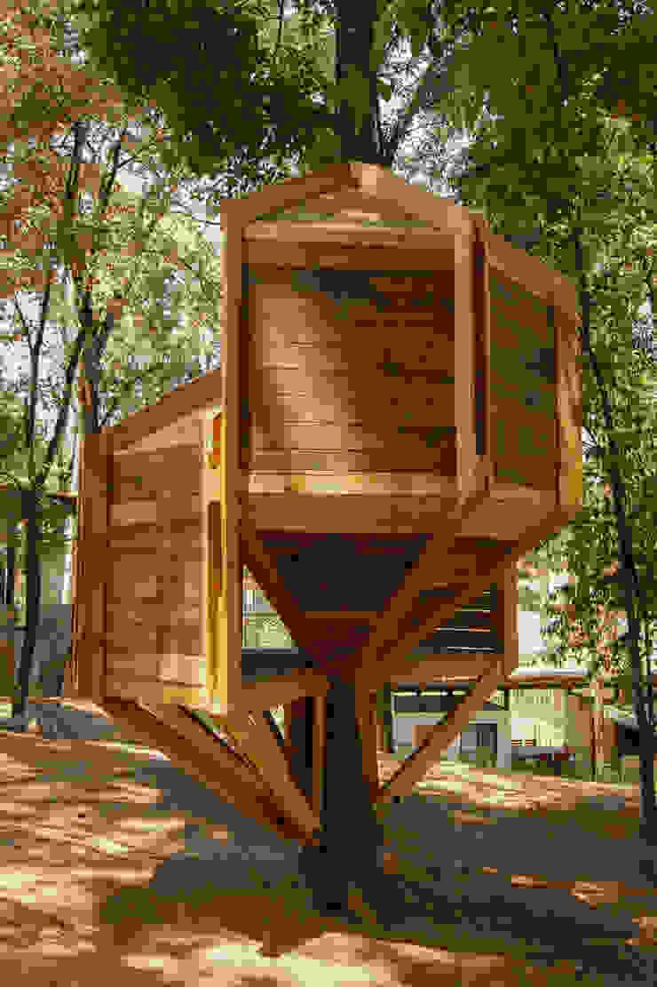 casa de árbol Casas modernas de Saavedra Arquitectos Moderno