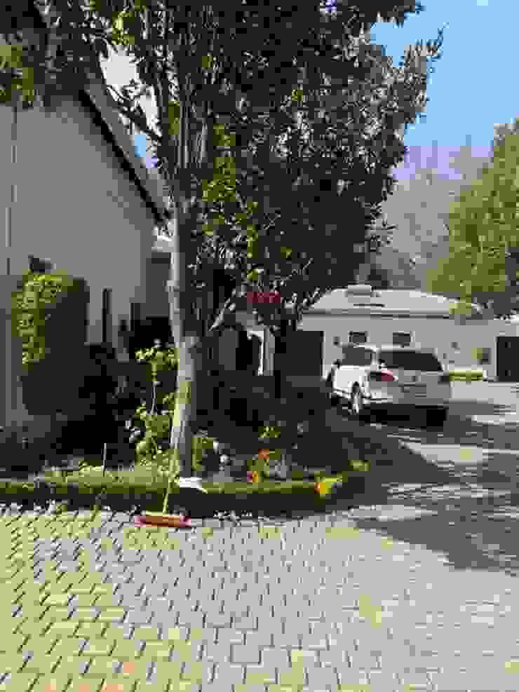 CS DESIGN Classic style houses