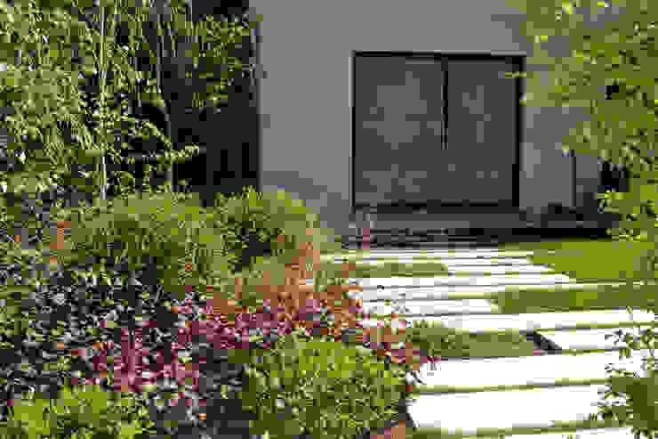 Floración heucheras Jardines de estilo moderno de Irati Proyectos Moderno
