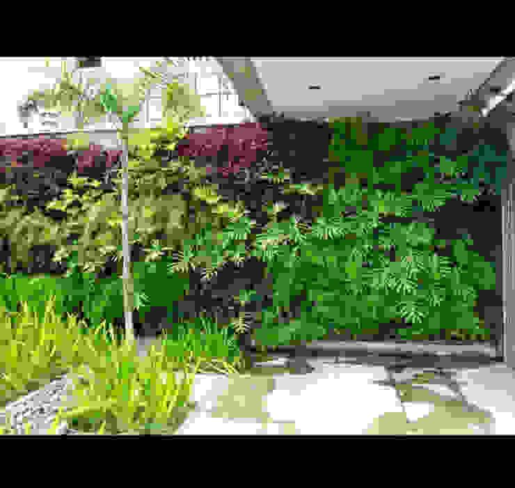 vertical com rega automática Jardins tropicais por Telhado Verde e Jardim Vertical SP Tropical