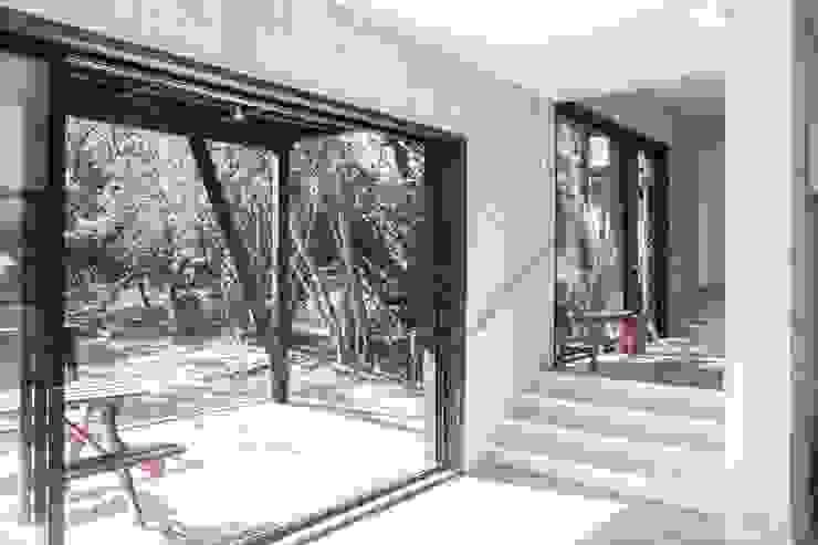 Modern Corridor, Hallway and Staircase by MACIZO, ARQUITECTURA EN MADERA Modern Wood Wood effect