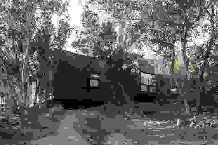 by MACIZO, ARQUITECTURA EN MADERA Modern Wood Wood effect