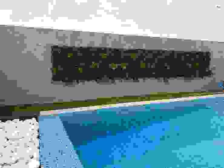 Piscinas de estilo tropical de MEA Interior Design Tropical