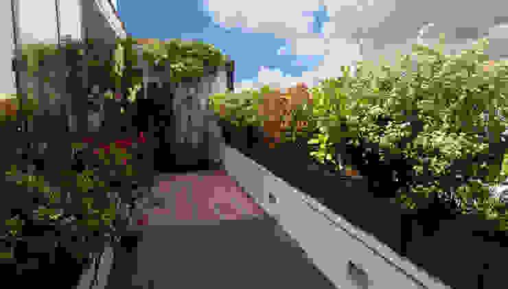 La terraza siete años después Arcadia Jardines y paisajes Balcones y terrazas de estilo moderno