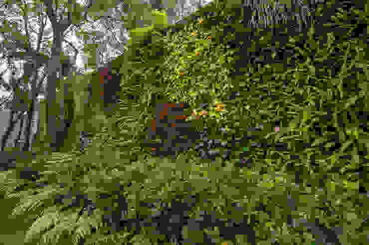 Muro Verde Natural, San Angel Inn Jardines modernos de Generación Verde Moderno