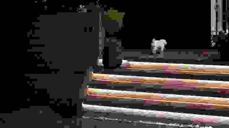Treppen-Beleuchtung von KHG Raumdesign - Innenarchitektin in Berlin und Umland, mgr. ing. Architektur Katharina Hajduk-Gast Modern Holz-Kunststoff-Verbund