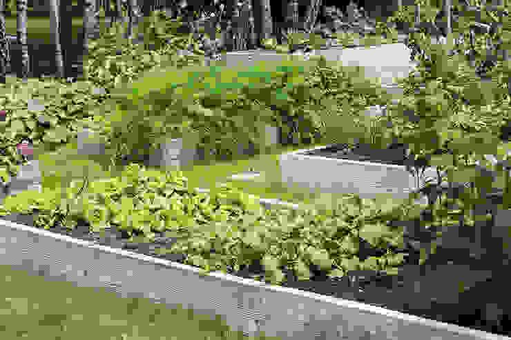 Warzywniki - Betonowe Rabaty Warzywne GartenPflanzen und Blumen