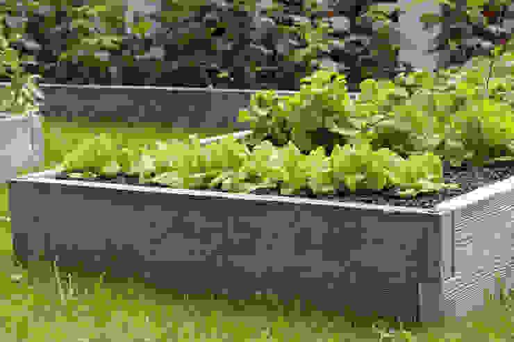Warzywniki - Betonowe Rabaty Warzywne GartenLauben und Gewächshäuser