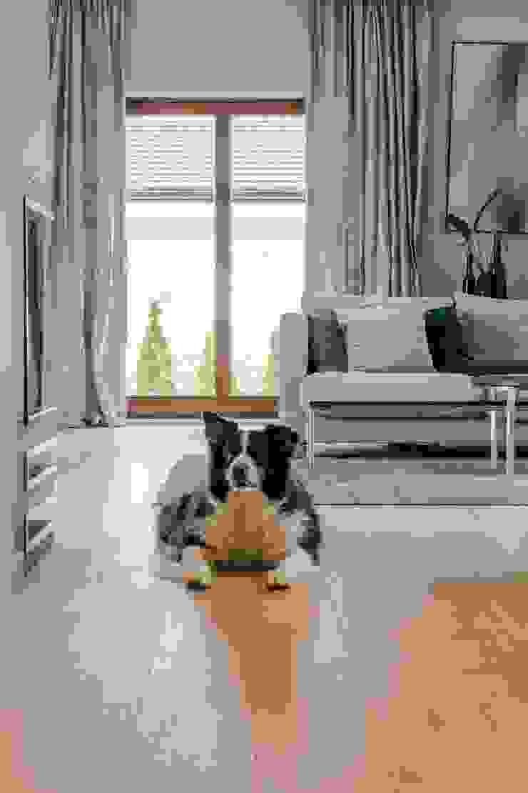 Scandinavian style living room by Bargański Pracownia Wnętrz Scandinavian