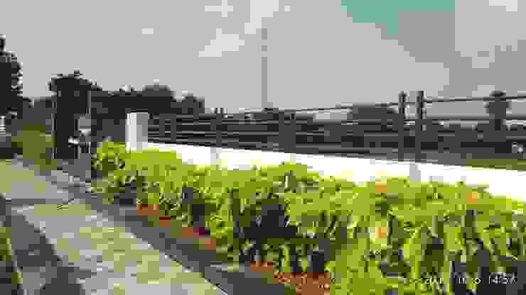 by Growscape Landscape Architect Classic Concrete