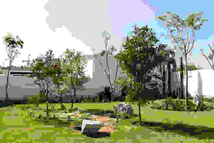 Jardín MCM Jardines modernos de Boceto Arquitectos Paisajistas Moderno