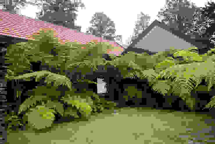 根據 TERRA Prados y jardines 熱帶風