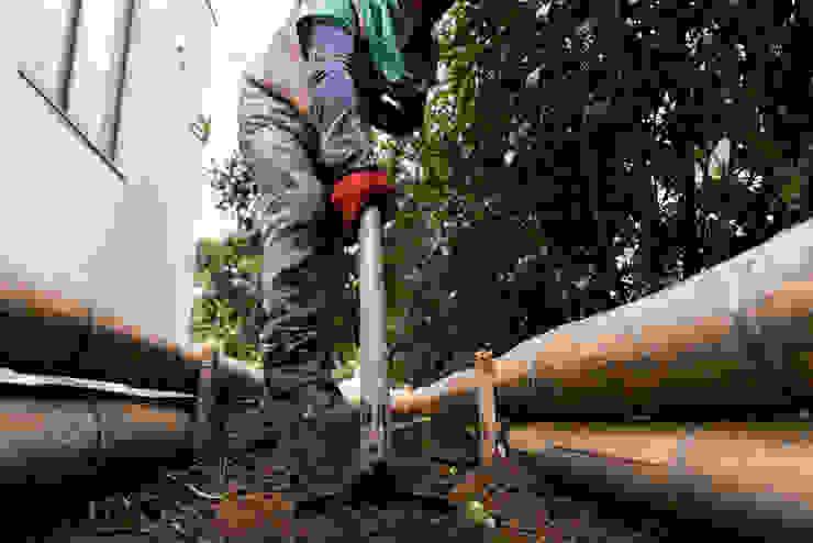 Proceso de construcción Jardines de estilo rústico de TERRA Prados y jardines Rústico