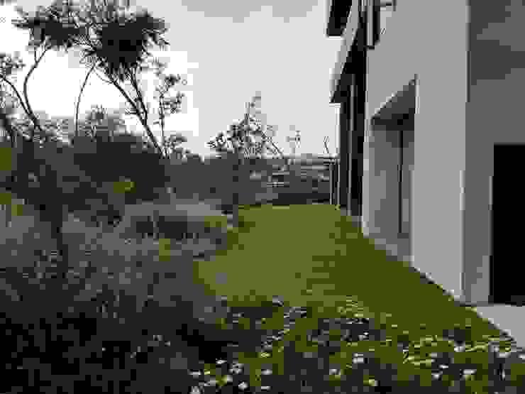 Solution Culture Jardines de estilo moderno Verde