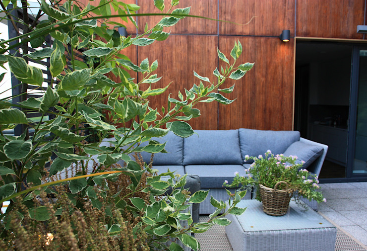 Modern Terrace by Miejskie Ziele Modern