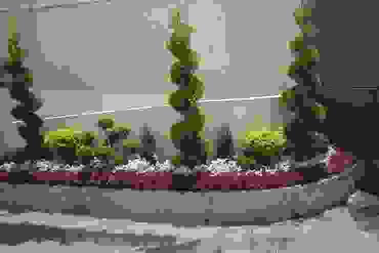 jardinria xochimilco Garden Plants & flowers