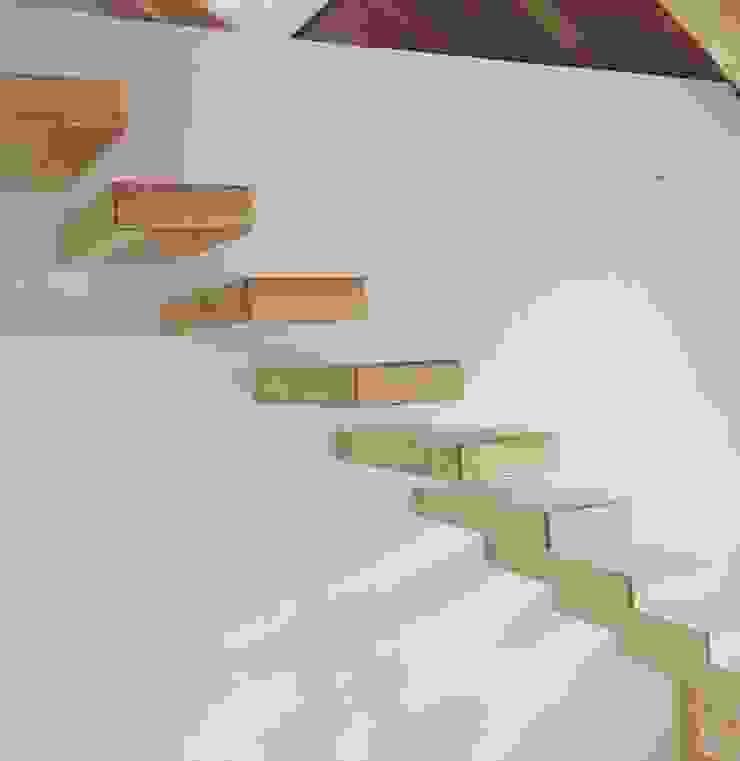 Urbanlift Lda - Engenharia e Reabilitação de Edifícios 玄關、走廊與階梯階梯 木頭 Amber/Gold