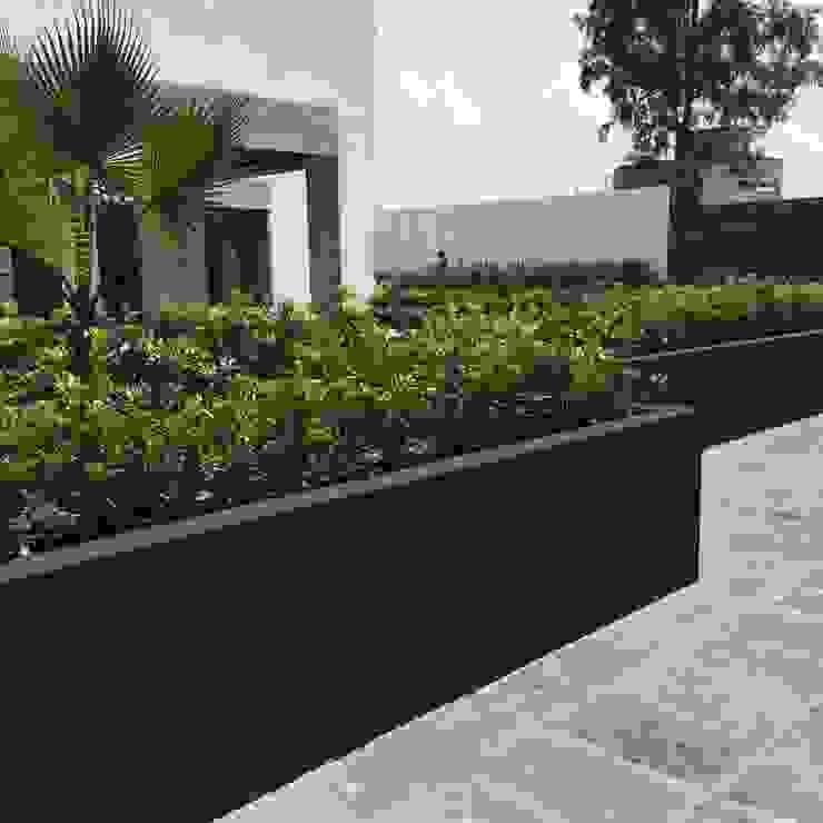 PASARFLOR Modern garden