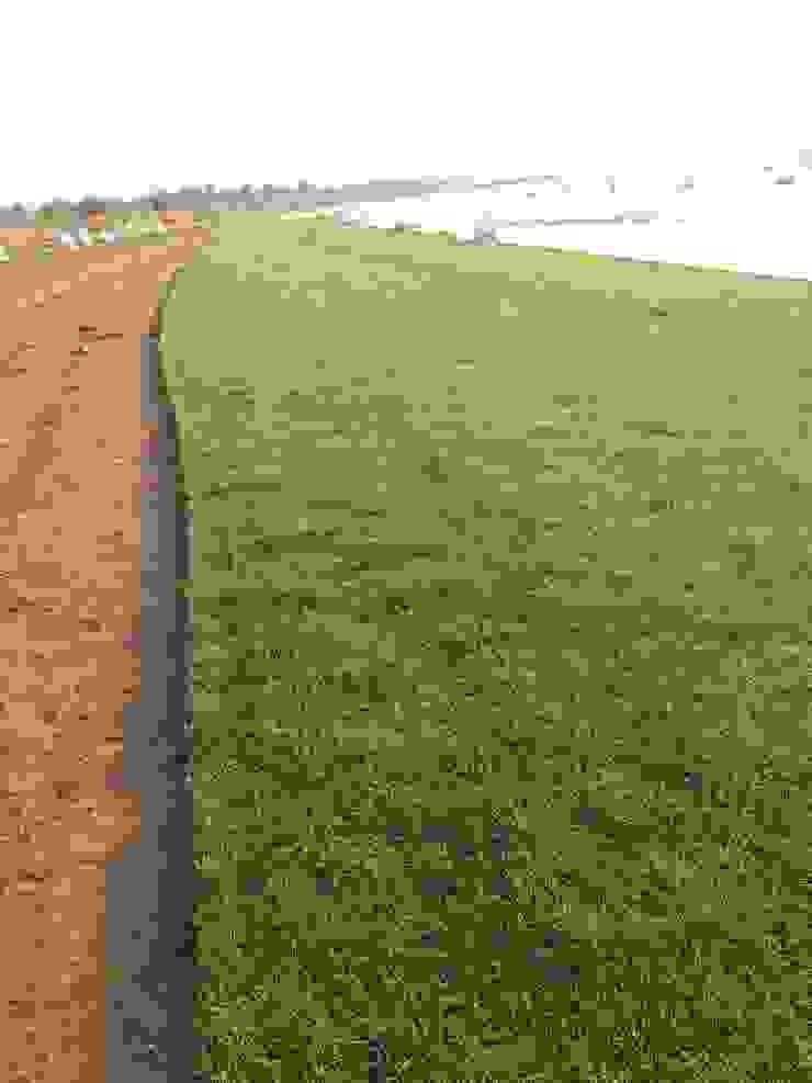 ريفي  تنفيذ Artificial grass, بلدي الألياف الطبيعية Beige