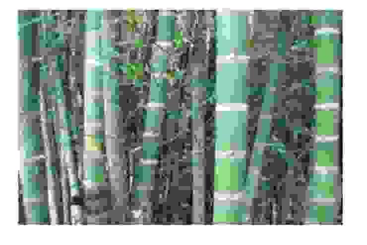 GRENBO Balconies, verandas & terraces Accessories & decoration Bamboo Wood effect