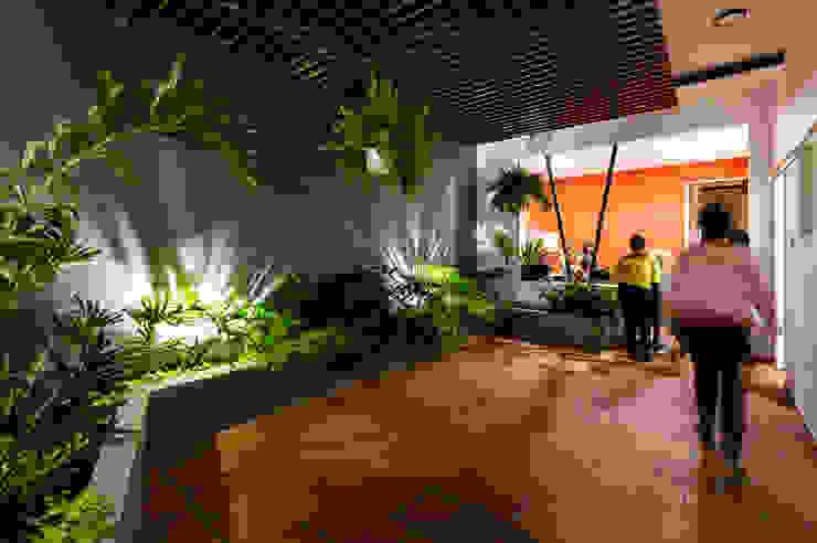 Patio interior. Colores, plantas y luz creando una atmósfera laboral amable y cálida. de A. Ordóñez Arquitectura Moderno