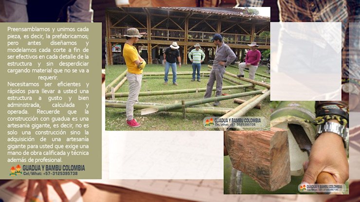 PROYECTO PREFABRICADO de GUADUA Y BAMBU COLOMBIA Rural