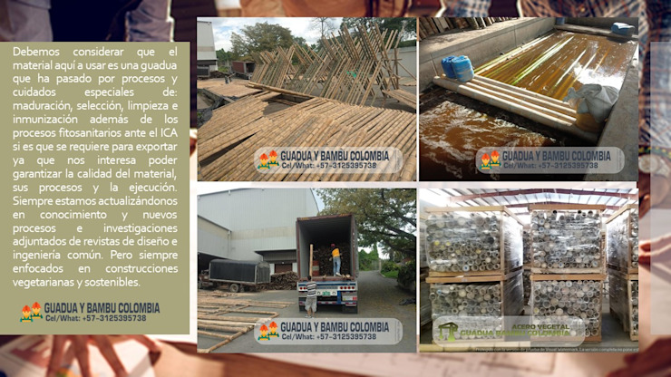 MATERIAL CON CALIDAD de GUADUA Y BAMBU COLOMBIA Rural