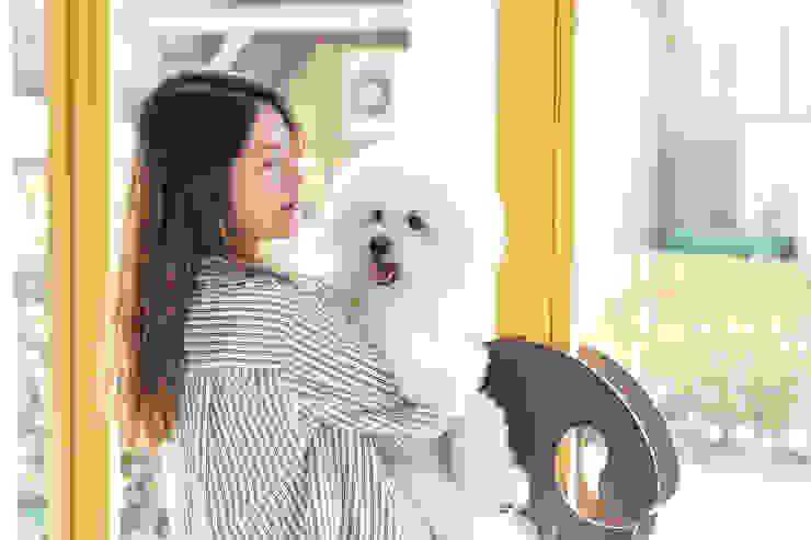 沐遇寵物沙龍 Mu Pet Salon | 離去 有隅空間規劃所 Commercial Spaces Iron/Steel Yellow