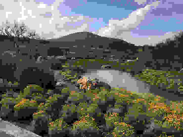 Hábitas บ่อน้ำในสวน หิน Yellow