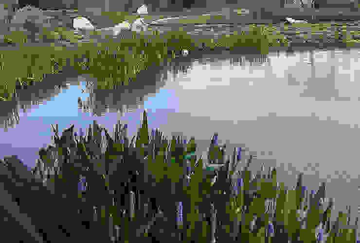 Hábitas บ่อน้ำในสวน Green