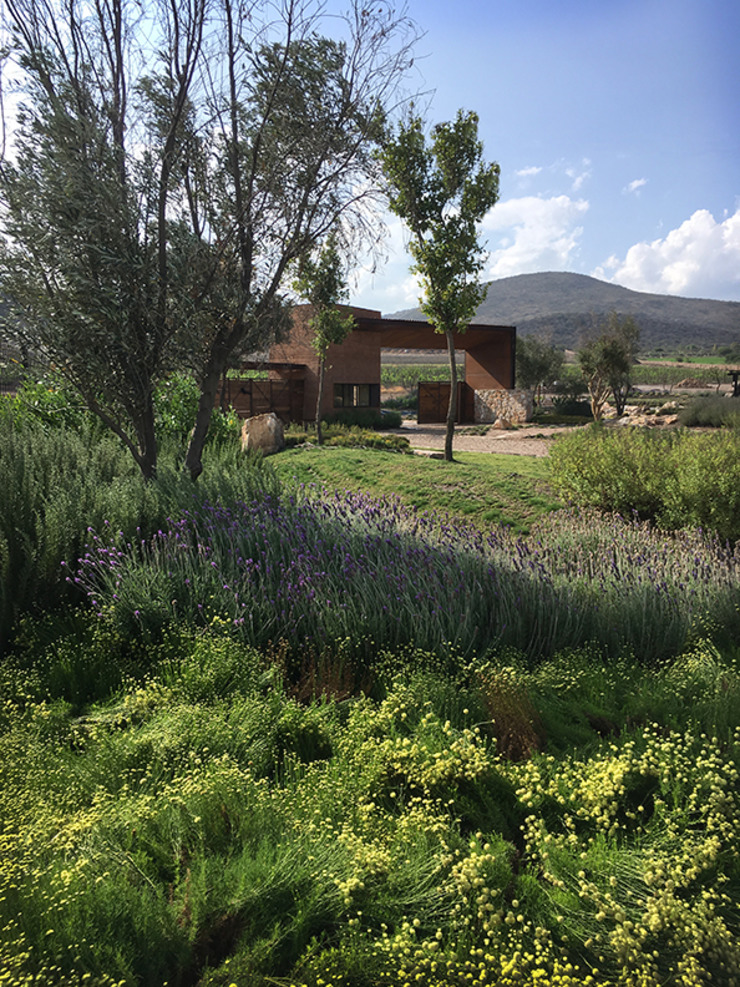 Hábitas สวนหน้าบ้าน Green