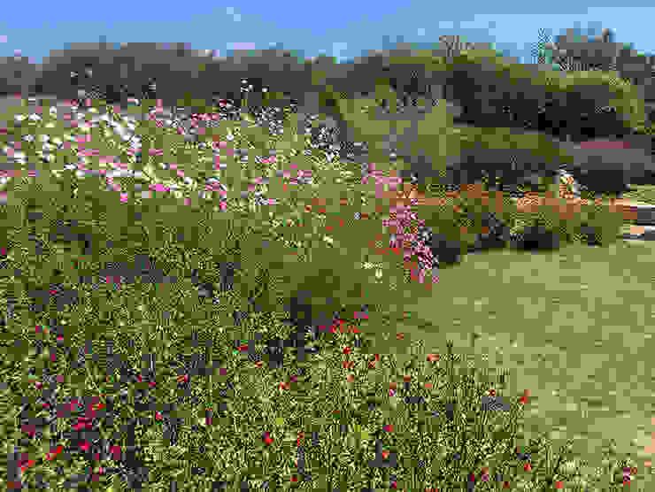 Hábitas สวน Multicolored