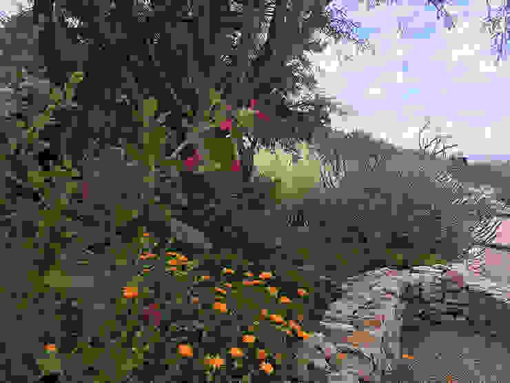 Hábitas สวนหิน หิน Multicolored