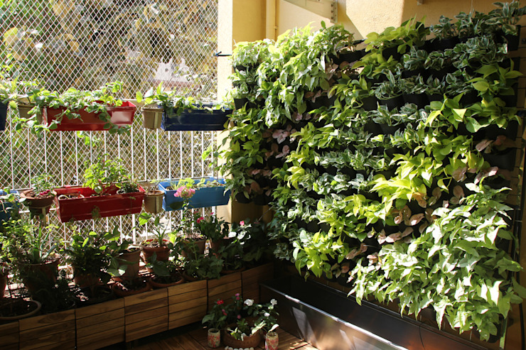 Vertical Garden by Interioforest Plantscaping Solutions Modern
