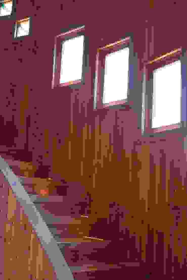 Casa Chauriye, Yunquen, Chile de MONAGHAN DESIGN SAS Escandinavo Derivados de madera Transparente