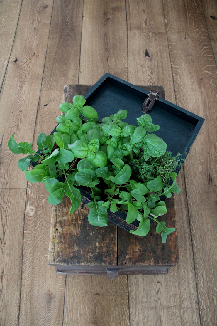 More Floors Per Forest Bolefloor Giardino moderno