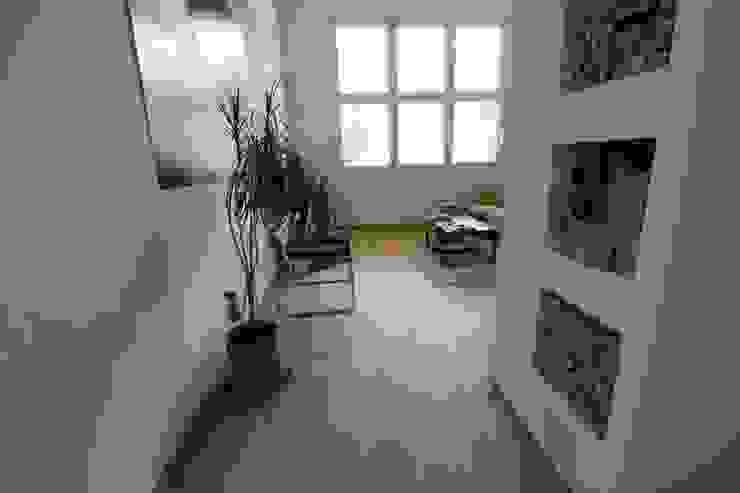 More Floors Per Forest Bolefloor Pavimento