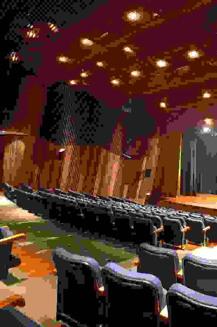 DETALLE DE LAS PAREDES LATERALES DE LA SALA OMAR SEIJAS, ARQUITECTO Salas de conferencias