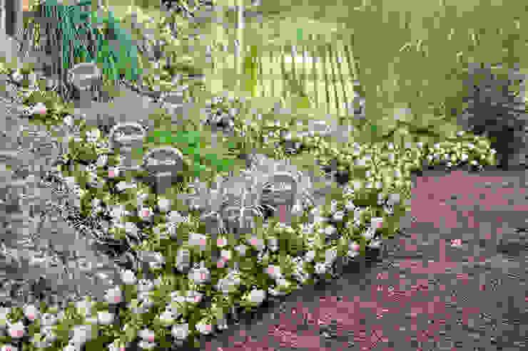 Bloombux Modern Garden