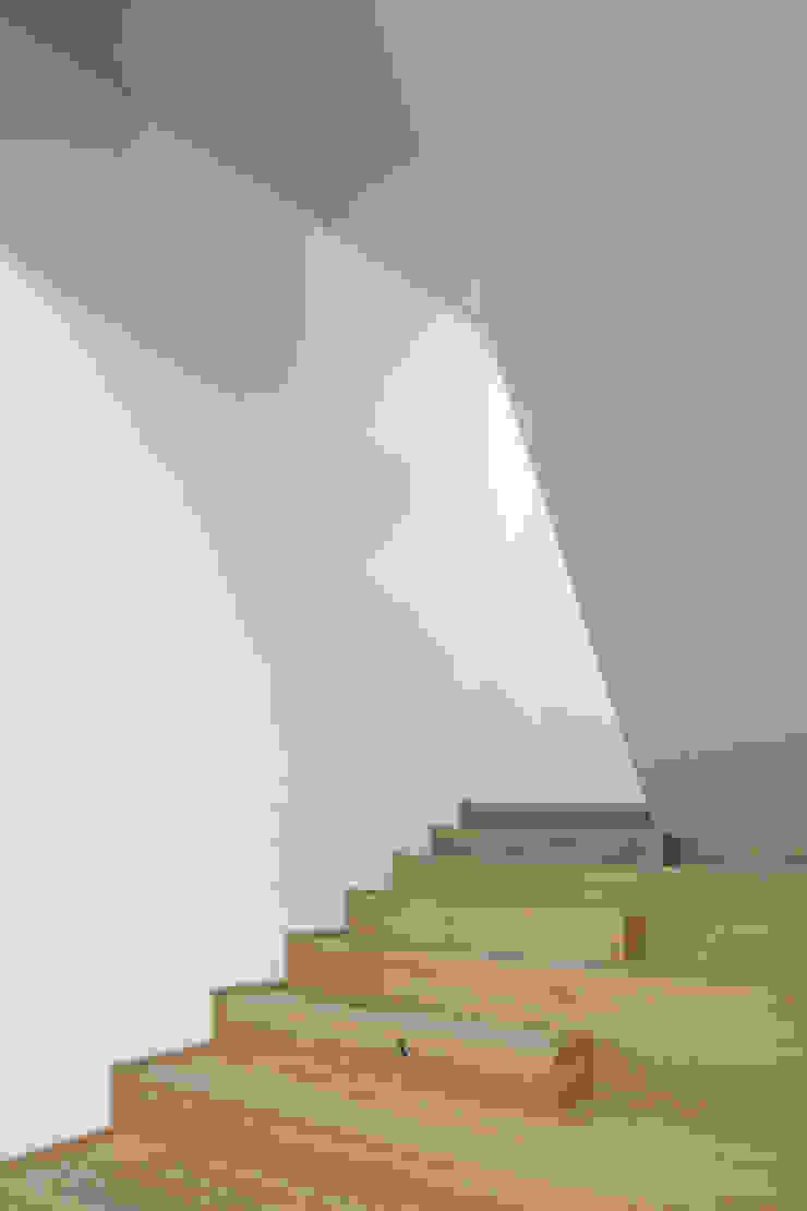 raro Stairs