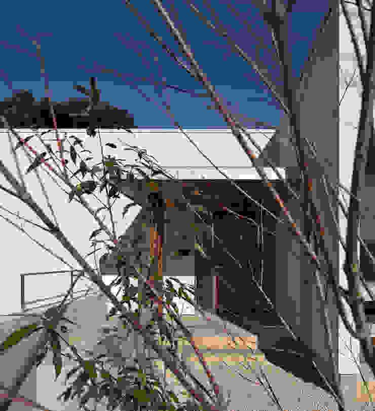権常寺の家 玄関 モダンな 家 の Atelier Square モダン スレート